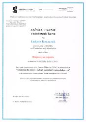 Łukasz Kozaczuk :: Diagnostyka Pojazdu